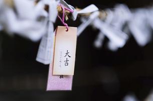 おみくじの写真素材 [FYI04804083]