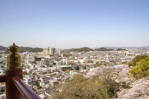 和歌山・紀三井寺から眺める町並みと春の桜の写真素材 [FYI04804552]