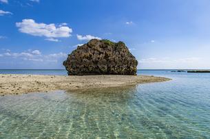 巨大な琉球石灰岩が立ち並ぶ新原ビーチの写真素材 [FYI04804650]