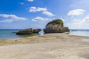 巨大な琉球石灰岩が立ち並ぶ新原ビーチの写真素材 [FYI04804652]