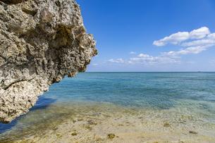 巨大な琉球石灰岩が立ち並ぶ新原ビーチの写真素材 [FYI04804653]
