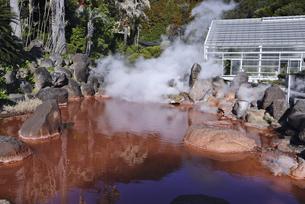 大分県 別府温泉 海地獄の赤色地獄の写真素材 [FYI04804685]
