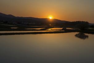 夕陽を反射する春の水田の写真素材 [FYI04805217]