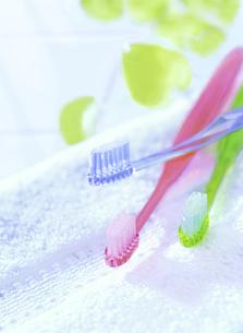 3本の歯ブラシとタオルの写真素材 [FYI04805357]