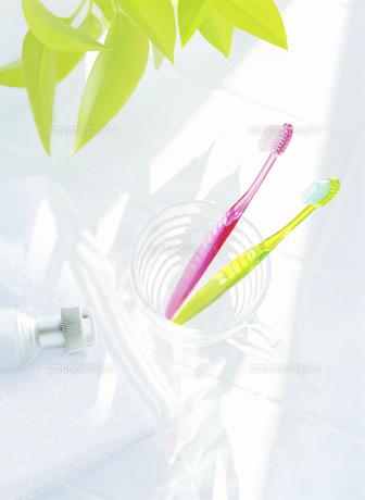 コップの歯ブラシとタオル   の写真素材 [FYI04805358]