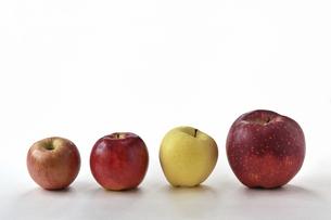 白背景の複数の林檎の写真素材 [FYI04805400]