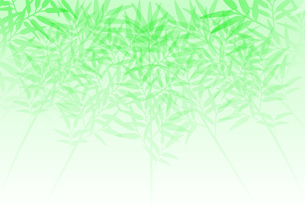 群生している笹のシルエットのイラスト素材 [FYI04805417]