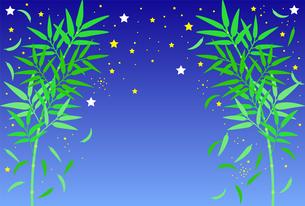 星空と、左右対称に生えている笹のイラストのイラスト素材 [FYI04805422]