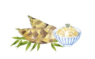 筍とたけのこご飯の水彩画のイラスト素材 [FYI04805442]