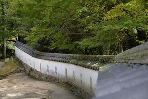 備中松山城、三の平櫓東土塀。の写真素材 [FYI04805654]