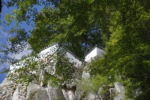 備中松山城、三の丸跡。の写真素材 [FYI04805657]