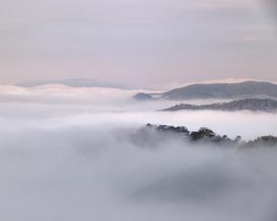 朝焼けの備中松山城。の写真素材 [FYI04805661]