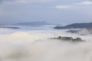 雲海と備中松山城。の写真素材 [FYI04805662]