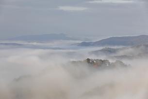 雲海と備中松山城。の写真素材 [FYI04805663]