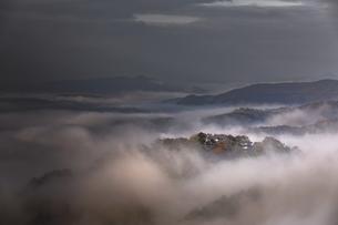 紅葉の備中松山城。の写真素材 [FYI04805664]