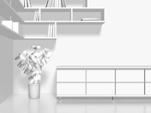 白いローチェストと本棚と植物のイラスト素材 [FYI04805776]