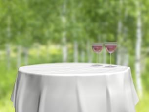 円卓とワイングラスと白樺林のイラスト素材 [FYI04805853]