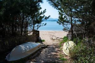 糸島のビーチ、松林に置かれたボートと木陰の写真素材 [FYI04806033]