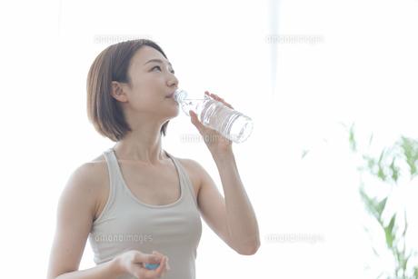 水を飲む女性の写真素材 [FYI04806263]