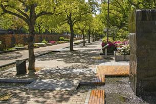 神戸・東遊園地の遊歩道の写真素材 [FYI04806335]