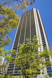 街の高層ビルと青空の写真素材 [FYI04806336]