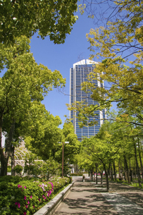 神戸・東遊園地の遊歩道の写真素材 [FYI04806339]
