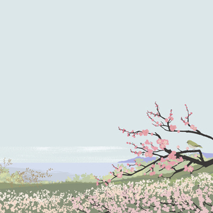 春の梅のイラスト素材 [FYI04806746]
