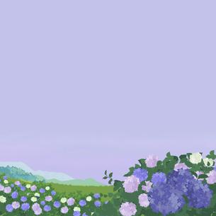 梅雨の紫陽花のイラスト素材 [FYI04806749]