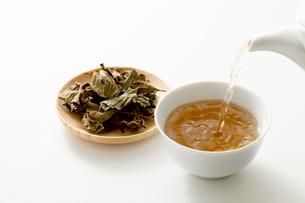 ドクダミ茶の写真素材 [FYI04806784]