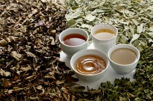 野草茶、健康茶の写真素材 [FYI04806785]