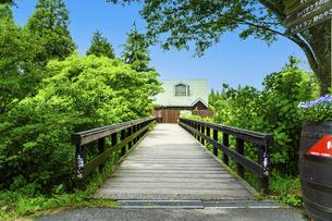新緑風景 うららかな春の季節 (くじゅう花公園)の写真素材 [FYI04807039]