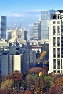 帝国ホテルから見た国会議事堂と高層ビルと紅葉した木々が並ぶ景観の写真素材 [FYI04807915]