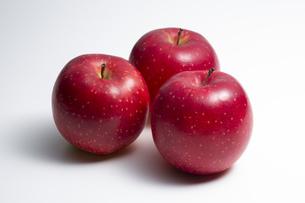 りんごの写真素材 [FYI04807916]