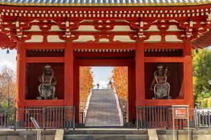 旧台徳院霊廟惣門の写真素材 [FYI04808024]