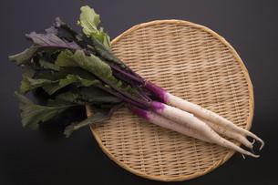 日野菜かぶの写真素材 [FYI04808067]
