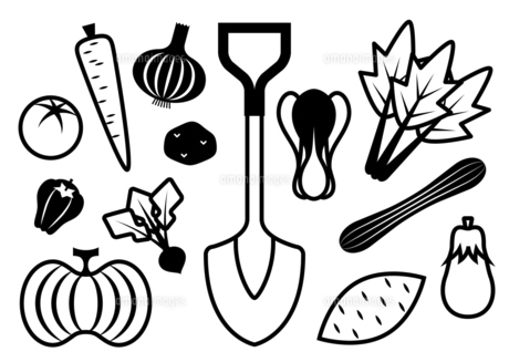 野菜とスコップ モノクロ イラストのイラスト素材 [FYI04808127]
