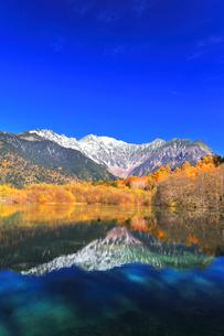 秋の上高地 大正池より紅葉と冠雪の穂高連峰の写真素材 [FYI04808162]