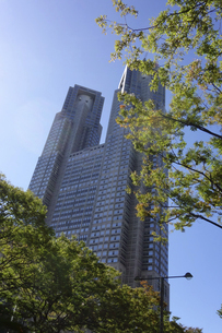 東京新宿西口にそびえ立つ副都心の高層ビル群の写真素材 [FYI04808179]