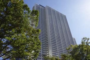 東京新宿西口にそびえ立つ副都心の高層ビル群の写真素材 [FYI04808180]
