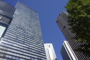東京新宿西口にそびえ立つ副都心の高層ビル群の写真素材 [FYI04808186]