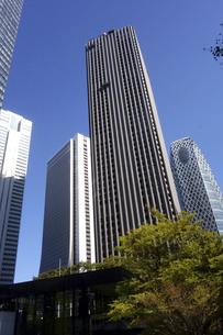 東京新宿西口にそびえ立つ副都心の高層ビル群の写真素材 [FYI04808187]