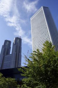 東京新宿西口にそびえ立つ副都心の高層ビル群の写真素材 [FYI04808193]