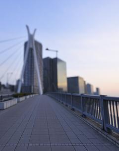 早朝の中央大橋と高層ビル群の写真素材 [FYI04808284]