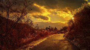 【冬】雪が積もった夕方の歩道に夕日が差し込む様子の写真素材 [FYI04808472]