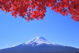 河口湖の紅葉と富士山の写真素材 [FYI04808486]