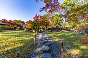 名古屋城二之丸庭園を美しく染める紅葉の写真素材 [FYI04808533]