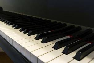 ピアノの黒鍵と白鍵の写真素材 [FYI04808601]