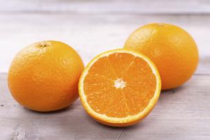 清見オレンジの写真素材 [FYI04808626]