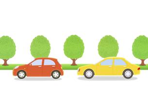 2台の車と街路樹の写真素材 [FYI04808890]