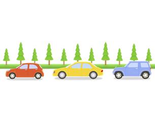 3台の車と街路樹の写真素材 [FYI04808891]
